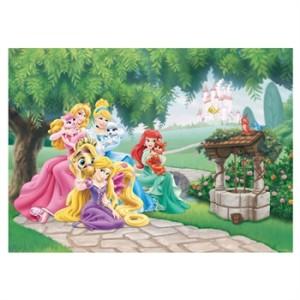 disney_princess_fototapet_billede.jpg