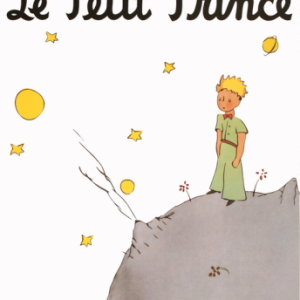 le-petit-prince-art.co.uk