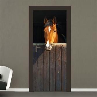 hest-fototapet-fotostat.jpg