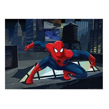 spiderman_fototapet_billede_0713.jpg