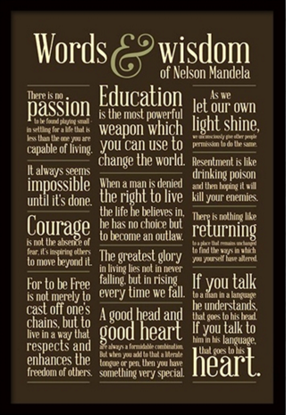 Mandela-nicewall