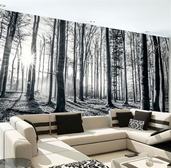 skov-sort-hvid-fototapet.jpg