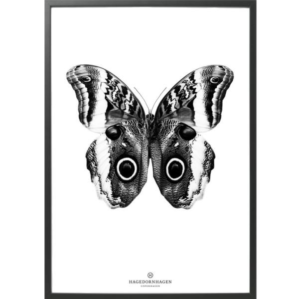 hagedornhagen_plakat_b_3_sommerfugl.jpg
