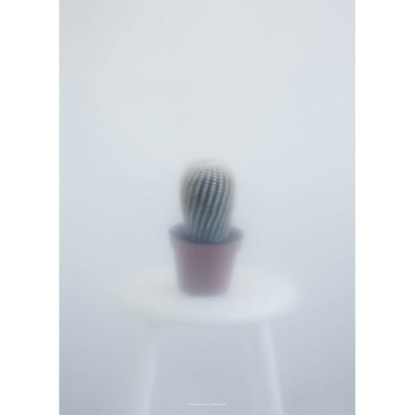 kritina_dam_kaktus_plakat_botanic_botanik_cactus_b.jpg
